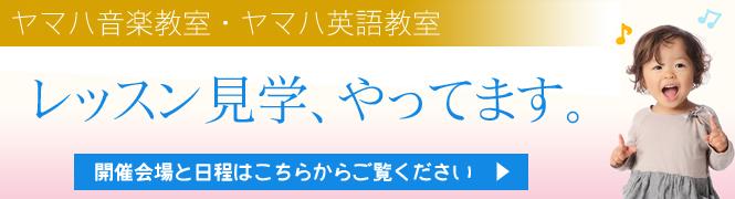 bn665_lessonkengaku