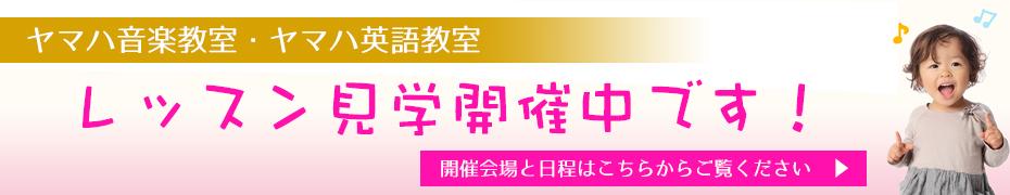 bn930_lessonkengaku3
