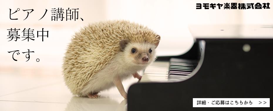 bn930_pianokoushibosyuu