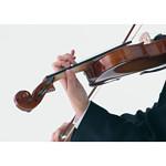 lesson_violin